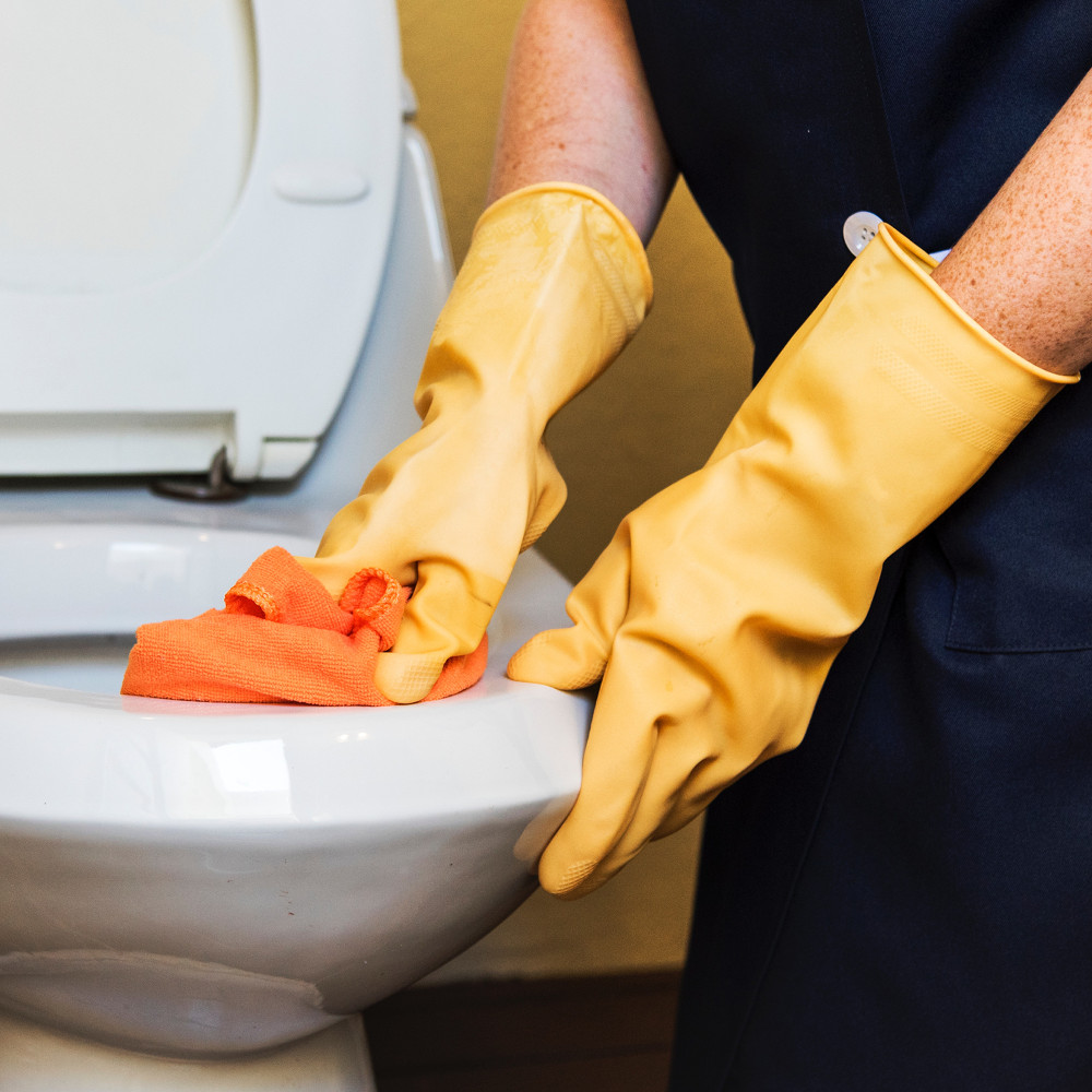 Cleaning toilet • Home Maintenance • Paragon Home Services • World-class home services in Lakeland Florida