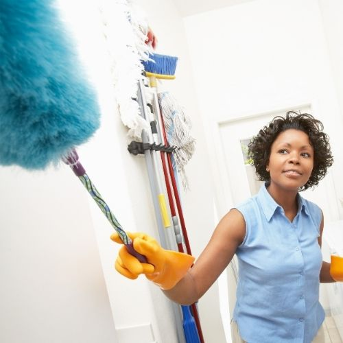 Dusting • Home Maintenance • Paragon Home Services • World-class home services in Lakeland Florida